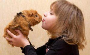best pet kids
